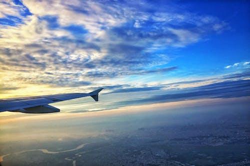 フライト, 青空の無料の写真素材