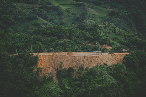 Photos gratuites de arbres, clairière, destruction