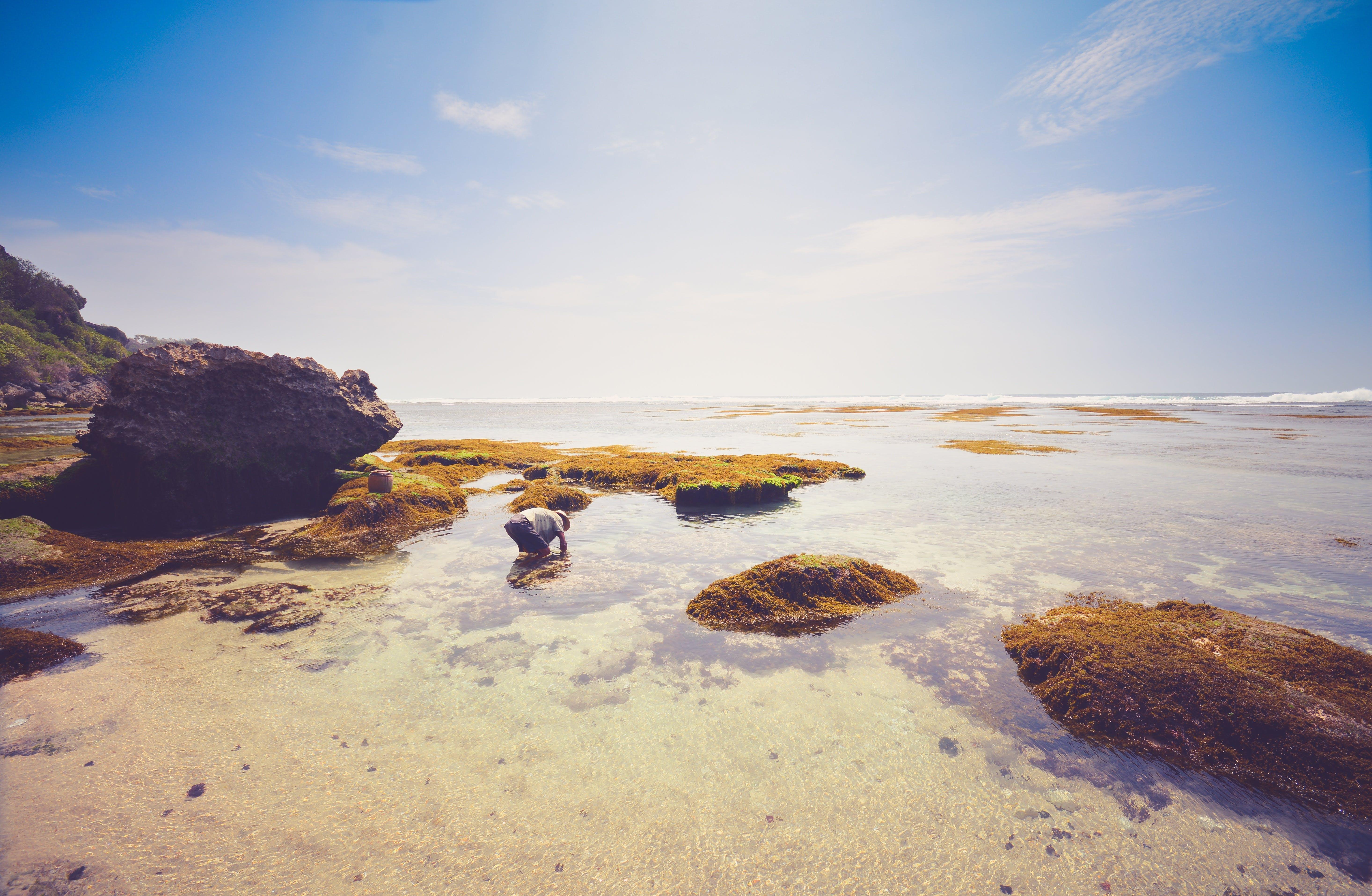 Free stock photo of beach, bluesky, holiday, rocks