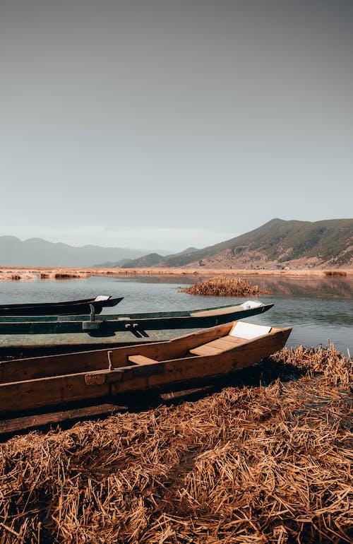 Gratis arkivbilde med båt, daggry, elv