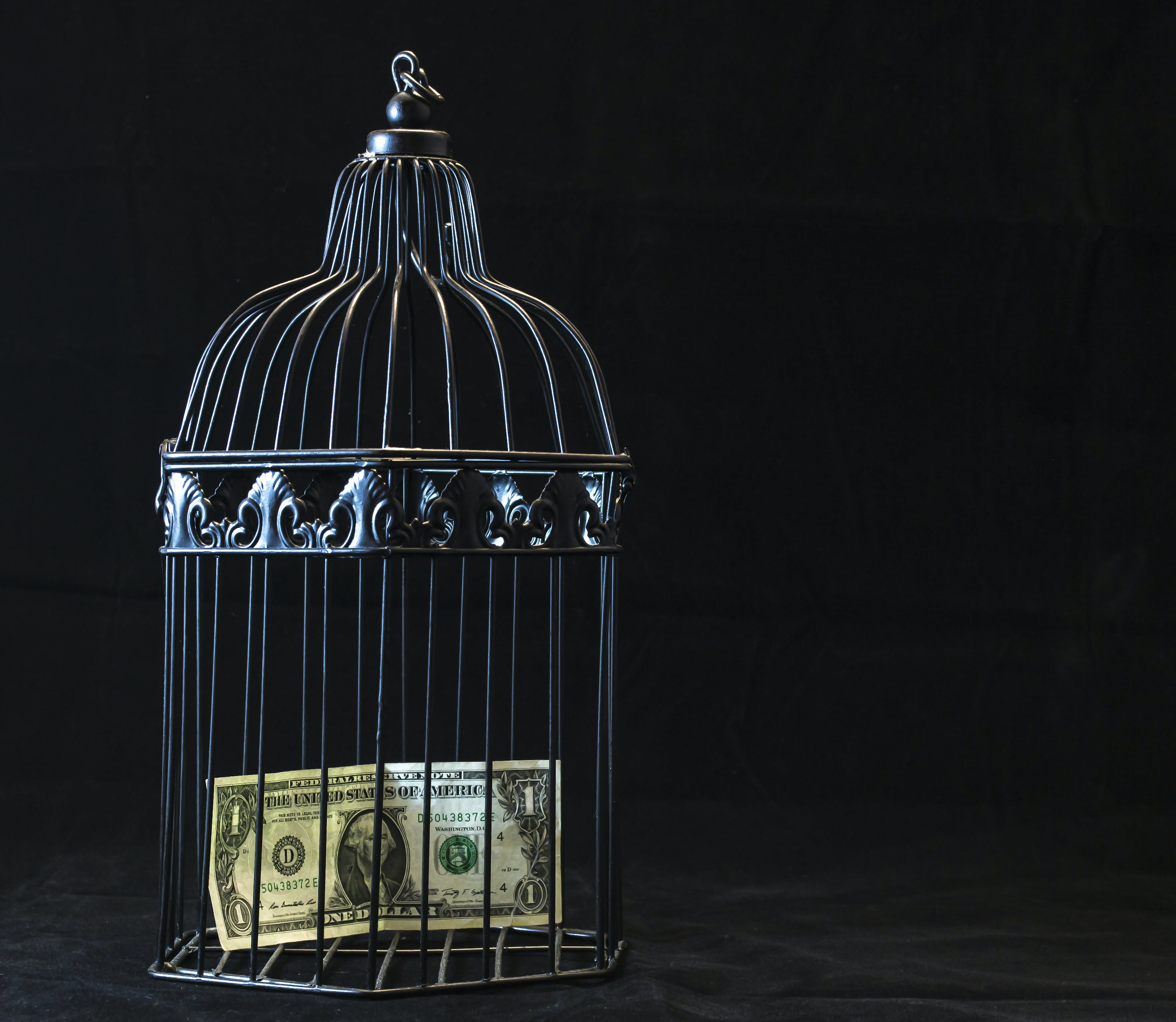 Black Steel Pet Cage With One Dollar