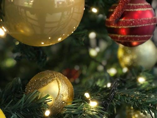 Foto profissional grátis de decoração de Natal, Natal