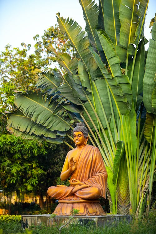Yellow Buddha Statue near Palm Leaves