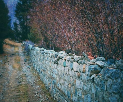 Free stock photo of mountain, nature, pakistan