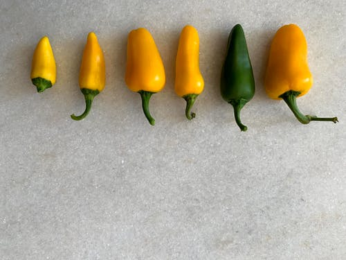 Free stock photo of bell pepper, vegetables, yellow