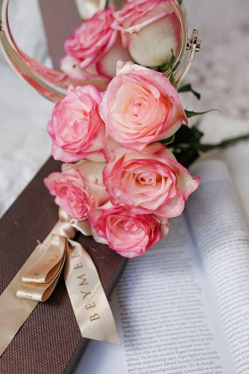 bitki örtüsü, çiçek, Çiçek açmak içeren Ücretsiz stok fotoğraf