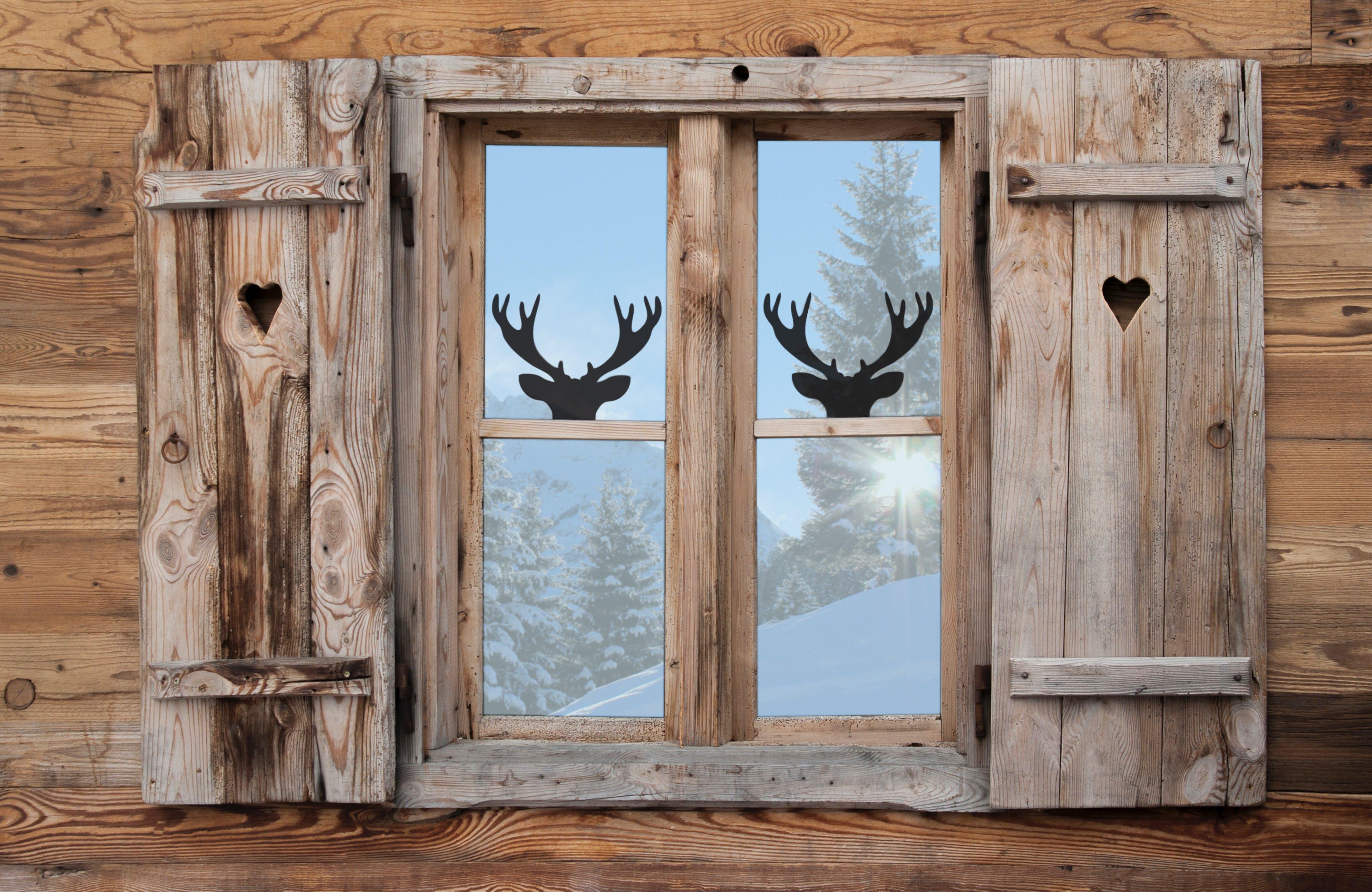 Free stock photo of atmosphere, caribou, christmas, deer