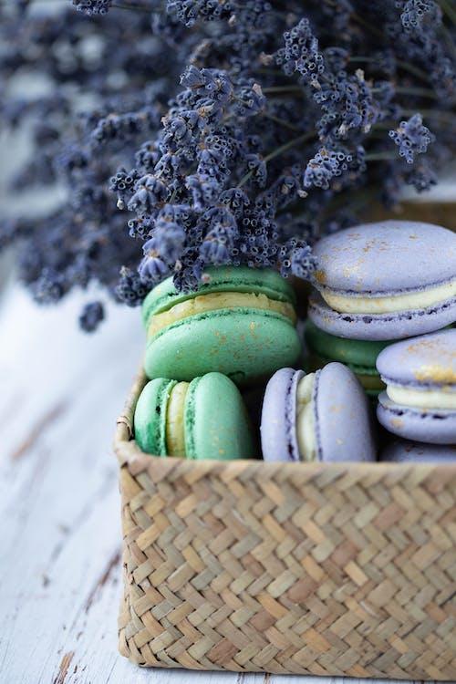 Fotos de stock gratuitas de adentro, amable, aperitivo
