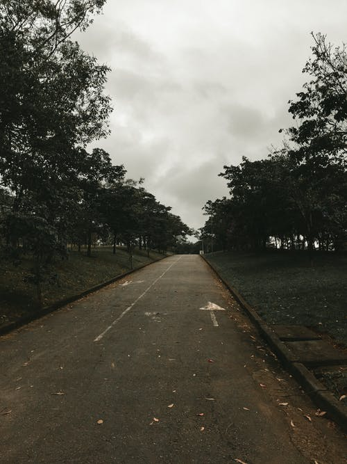 Gray Concrete Road Between Green Trees Under White Clouds