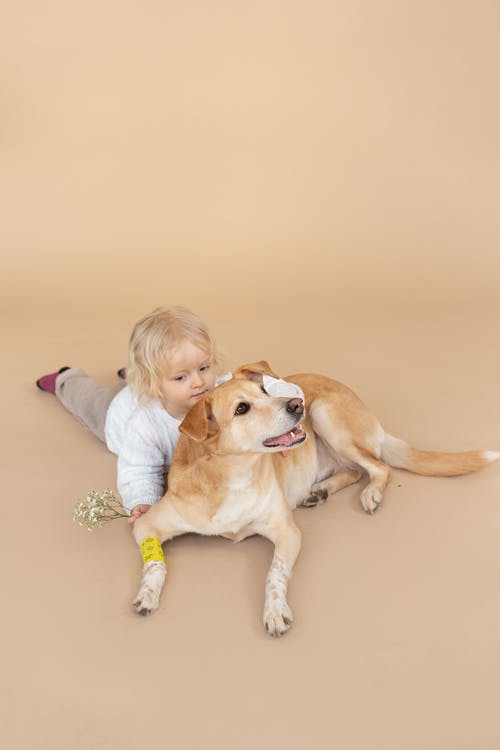 Immagine gratuita di abbracciando, adorabile, amore