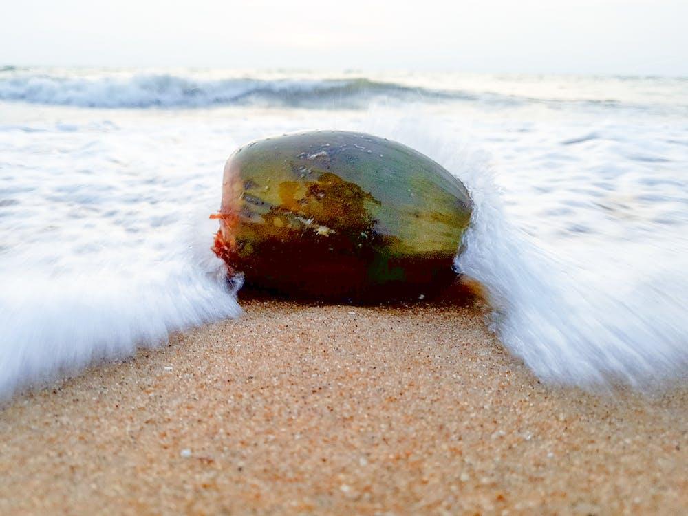 perfectclick, вода, пляж