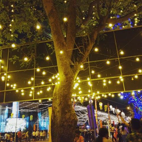 卫塞节, 晚上 的 免费素材照片