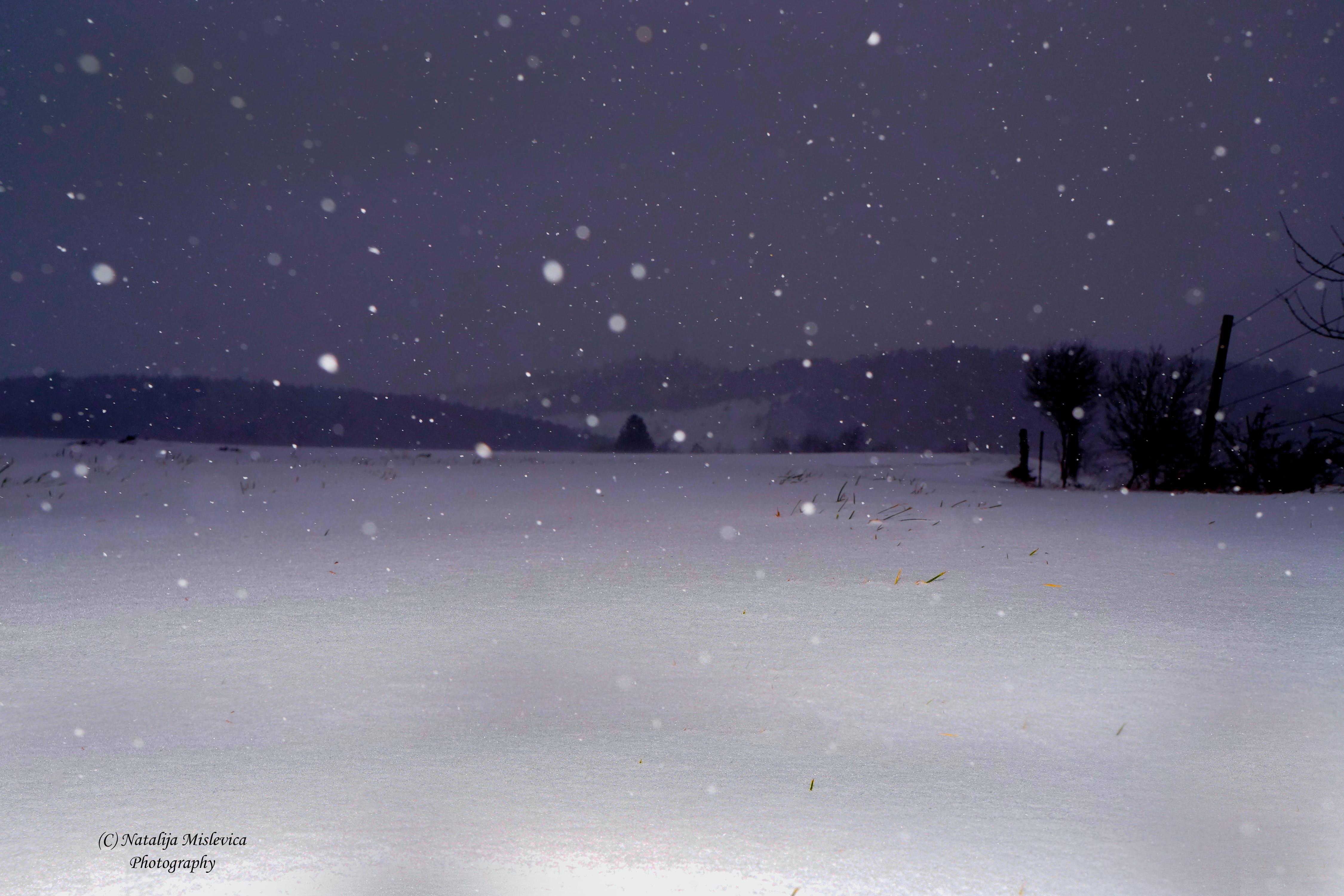 Kostenloses Stock Foto zu nacht, schnee, schwarz und weiß, still