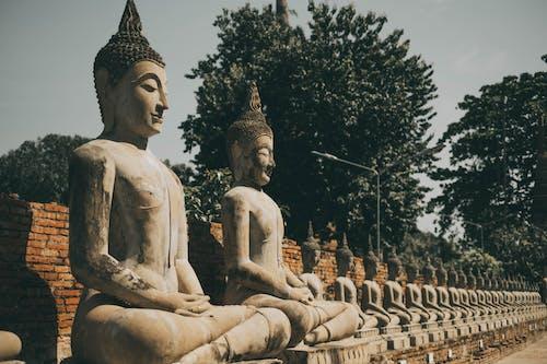 abide, anıt, Buda içeren Ücretsiz stok fotoğraf