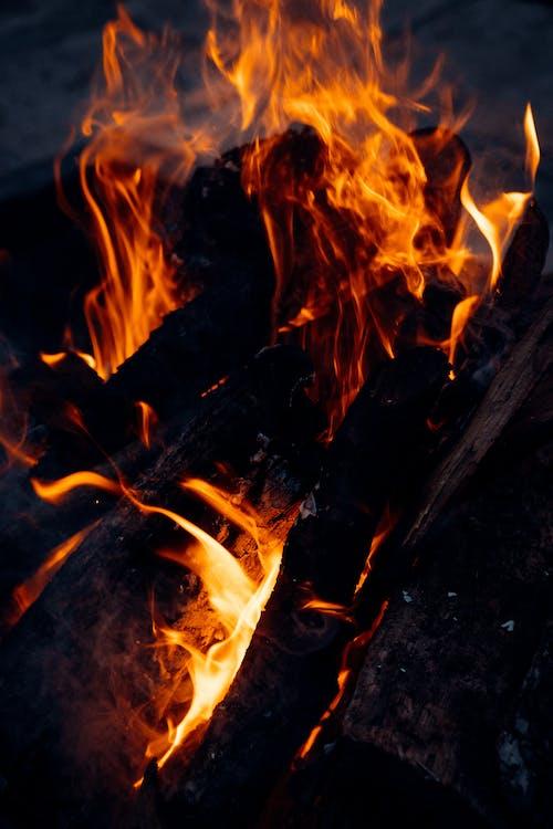 Foto d'estoc gratuïta de ardent, cremant, en flames