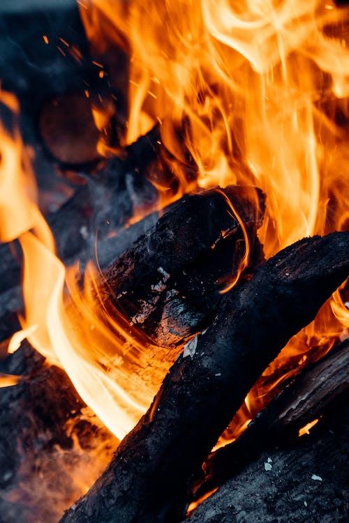 Foto d'estoc gratuïta de ardent, carbó, carbonet