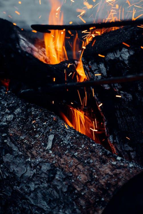 Close Up Shot of a Burning Wood