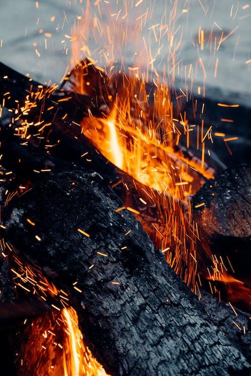 Foto d'estoc gratuïta de ardent, carbó, cremant