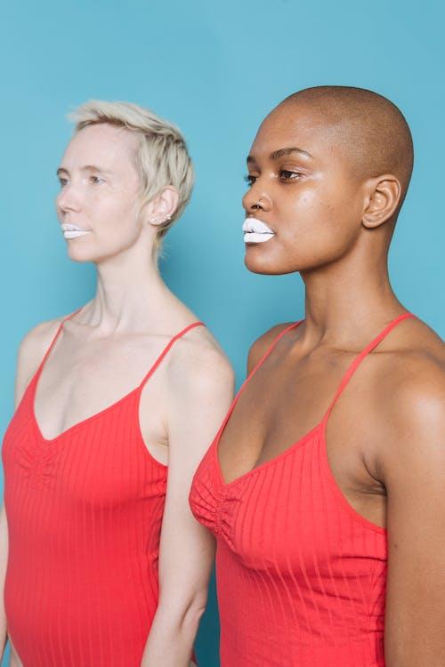 アフリカ系アメリカ人女性, インドア, カリスマ的の無料の写真素材