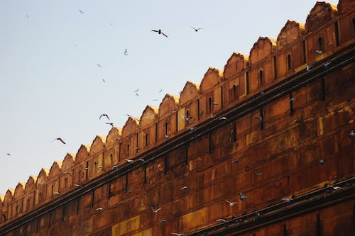 Free stock photo of chandni chowk, delhi, india