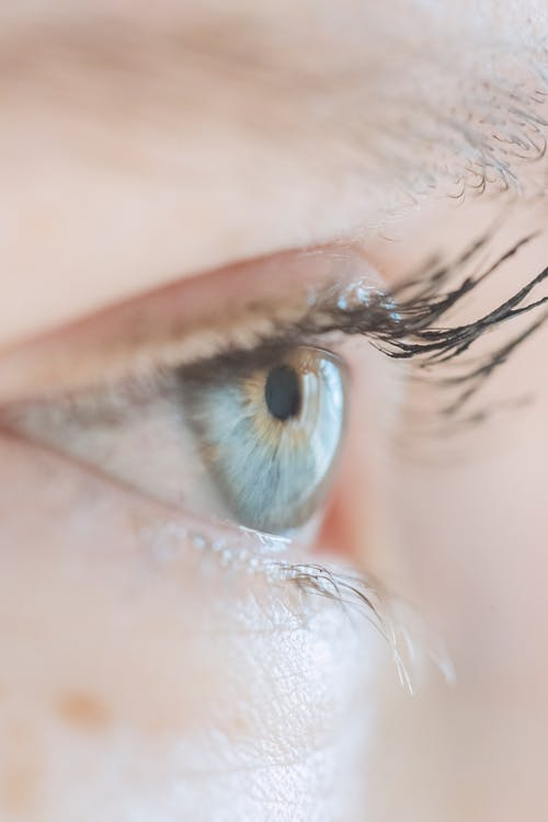 Closeup of opened blue eye with long dark eyelashes of crop anonymous lady
