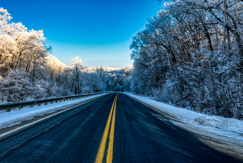 Gray Asphalt Road Between Trees Under Blue Sky