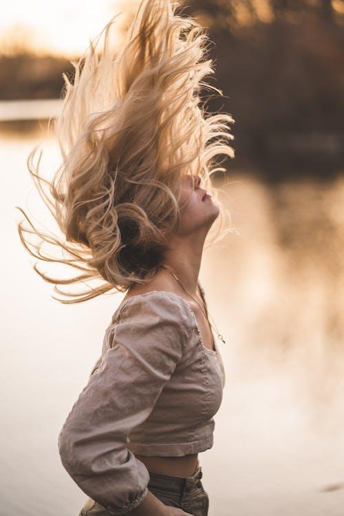 Δωρεάν στοκ φωτογραφιών με blondie, αίγλη, άνεμος