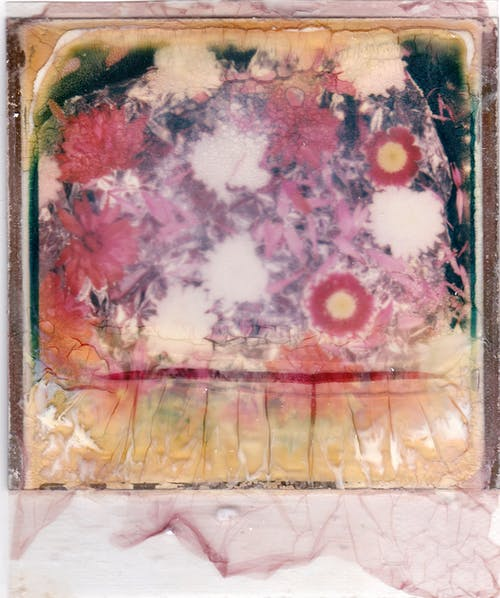 Red White and Yellow Floral Painting