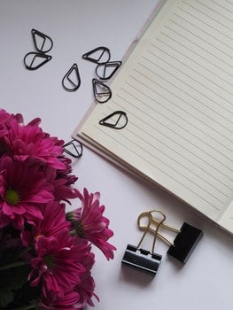 Free stock photo of flowers, desk, notebook, paperclips