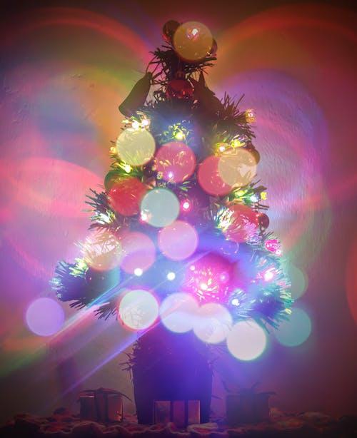Immagine gratuita di ã¡rbol, navidad, vacanza