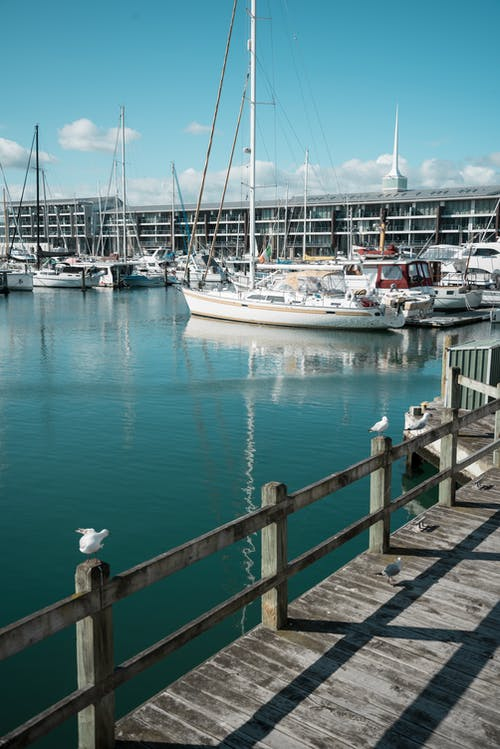 Modern white yachts moored on calm blue sea near wooden pier in city port on sunny day
