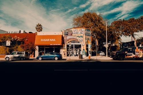 Foto d'estoc gratuïta de avinguda melrose, carrer, ciutat, costa oest