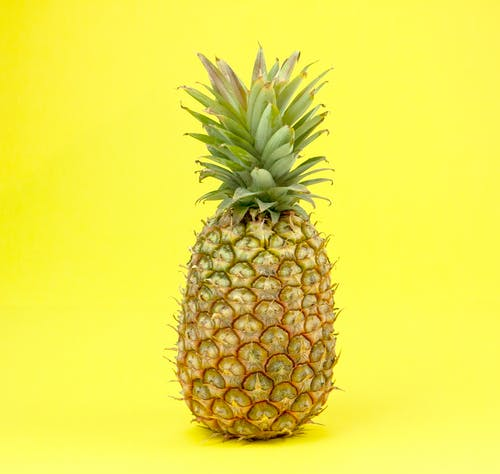Isolated whole ripe pineapple with long green leaves placed on bright yellow background