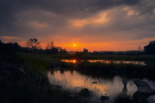 Green Grass Near Body of Water during Sunset