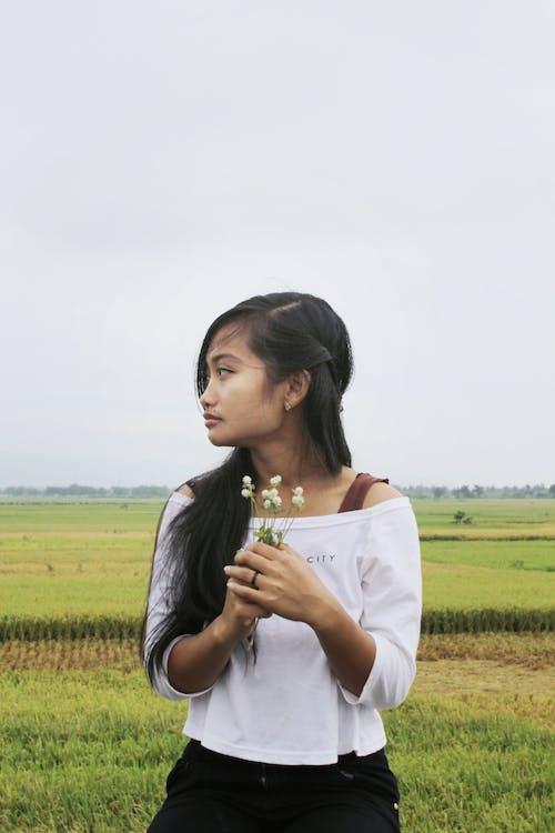 Gratis stockfoto met blijdschap, bloemen, boerderij, buitenshuis
