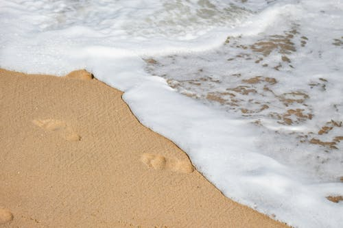 Close-Up Photo of Sea Foam on the Brown Sand