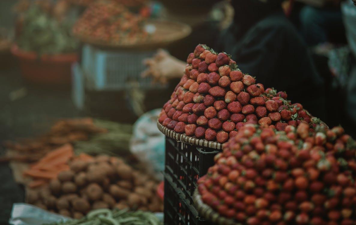 Strawberry Focus Photo