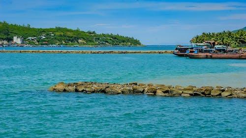 คลังภาพถ่ายฟรี ของ กลางวัน, จอดเรือ, ชายหาด, ต้นไม้