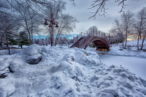 Photo of Bridge With White Snow