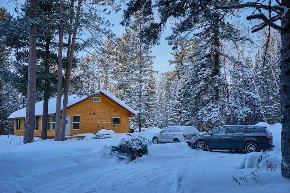 Snow Winter Landscape Woods