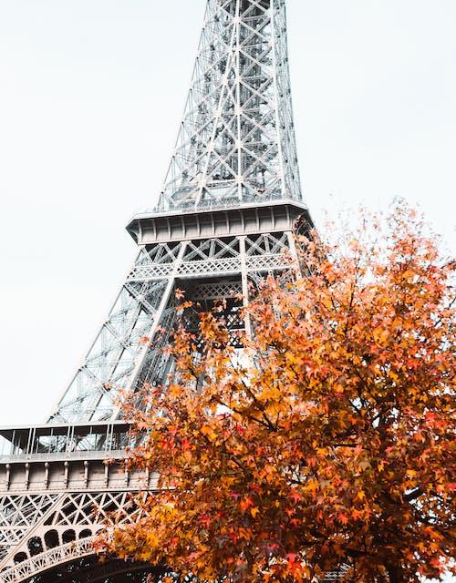 Photos gratuites de acier, architecture, automne