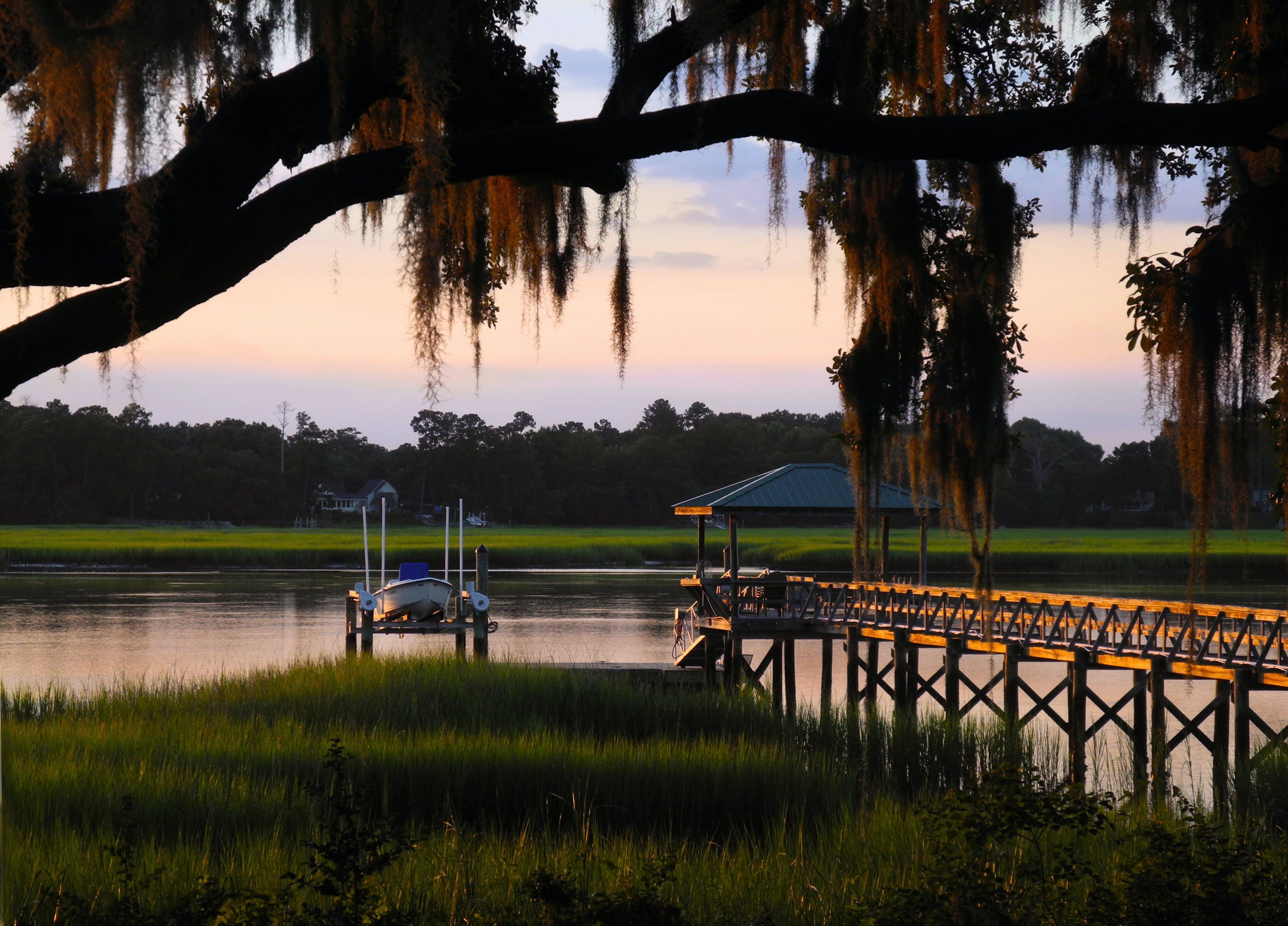 Free stock photo of South Carolina Low Country