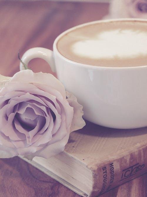 Foto d'estoc gratuïta de art latte, atractiu, beguda, bonic