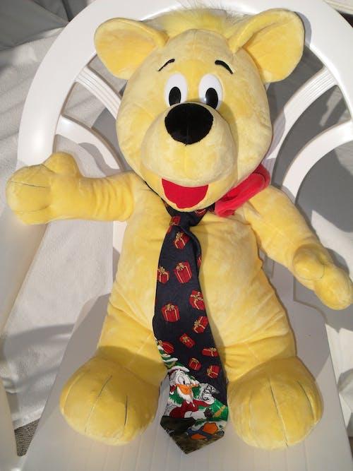Kostenloses Stock Foto zu gelb, sonnenbaden, teddy