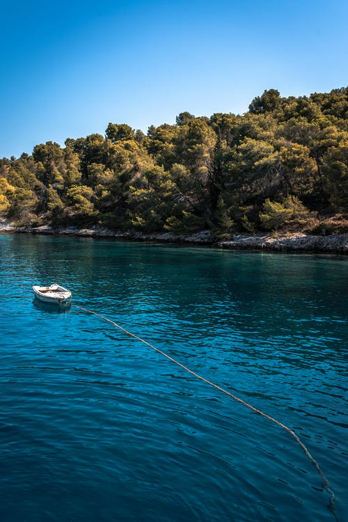 White Boat on Blue Sea Near Brown and Green Trees on Island