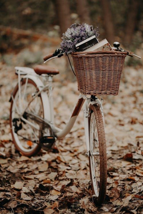 Flowers Inside the Basket on a Bike