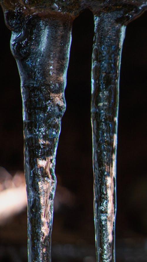 Gratis stockfoto met Bos, ijs, ijspegel