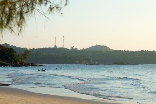 Free stock photo of beach, blue sky, coconut, ocean