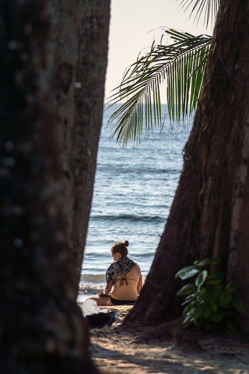 Free stock photo of beach, blue sky, coconut, girl