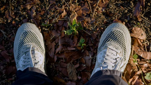 Crop feet of person in sneakers